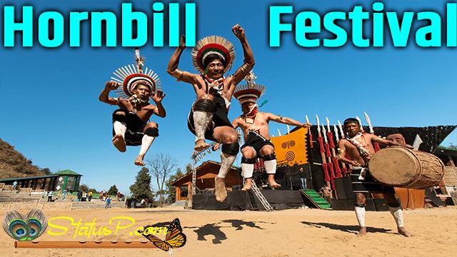 hornbill-national-festivals-of-india