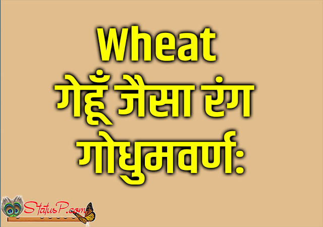 colors name in sanskrit wheat